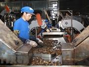 越南腰果业力争提高产品附加值