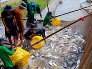 越南水产品养殖产量增长6%