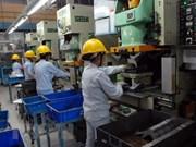 一季度承天顺化省为4875名劳动者提供就业机会