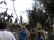 越南党和国家领导就古巴客机失事向古巴领导致慰问电