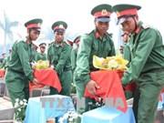 嘉莱省举行在柬牺牲的烈士遗骸安葬仪式