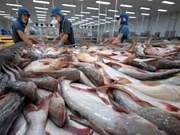 越南查鱼对美国出口仍呈现增长势头