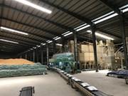 韩国招标寻购粳米 越南公司中标5吨