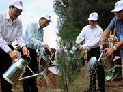 越南各沿海省市携手保护海洋环境