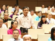 越南第14届国会第5次会议:阮氏金银要求有效合法使用基础设施投资专项资金