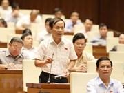 越南第十四届国会第五次会议:质询活动产生积极效应