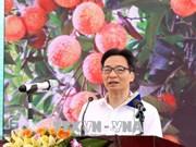 2018年海阳省清河荔枝节开幕