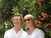 越南清河荔枝质量受瑞典驻越大使的好评