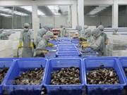 越南努力为输美企业化解困难