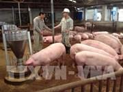 《畜牧法》助推越南畜牧业发展