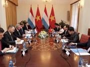 政府副总理兼外交部长与卢森堡大公国外交和欧洲事务大臣举行会谈
