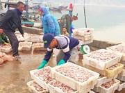 河静省注重水产养殖和捕捞产业发展  全力以赴助推海洋经济发展