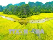 """""""三谷—长安金色""""2018年宁平旅游周以传统文化价值吸引游客"""