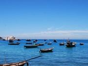 加强环保工作  努力保护与发挥占婆岛世界生物圈储备区的价值