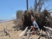 欧洲国家协助九龙江三角洲开展数十个适应气候变化项目