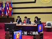 越南共同主持召开第18次东盟印度联合合作委员会会议