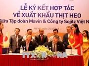 越南首次成功向国外出口猪肉