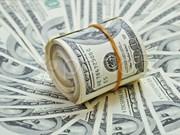 27日越盾兑美元中心汇率上涨15越盾