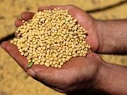 中国将下调原产于老挝农产品的进口关税