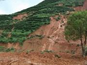 越南政府副总理郑廷勇要求全力高效推进灾后恢复重建工作