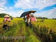 今年上半年农业国内生产总值创下10年来新高