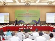 中东和非洲地区是越南颇具潜力的市场