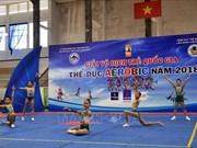 2018年越南国家青年健美操锦标赛在富安省举行