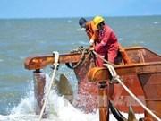 越南出资480亿多越盾对榕桔沉船遗址进行考古发掘