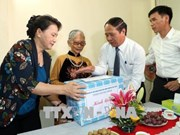越南国会主席阮氏金银在海防市调研