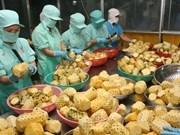 越南对中国的水产品出口前景乐观