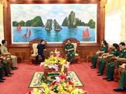 越南与柬埔寨加强地方间合作关系