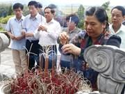 越南国会副主席丛氏放向陈富总书记陵墓献花上香