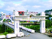 越中双边贸易额有望突破1000亿美元大关