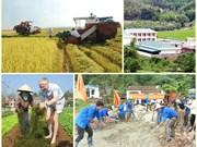 全国达新农村建设标准的乡达3370个