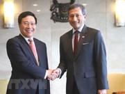 越南与新加坡同意充分和有效展开双方高层领导所达成的协议