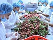 越南有望跻身世界五大农产品出口国家榜单