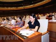 越南国会通过有关2019年法律法令制定计划和2018年法律法令制定计划调整方案的决议
