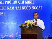 外交部副部长武鸿南:为海外越南人群体提供有力支撑