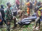 印尼一架小型飞机坠毁致8人死亡