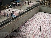 泰国将2018年大米出口目标上调至1100万吨