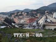 意大利大桥坍塌:尚未有越南公民伤亡报告