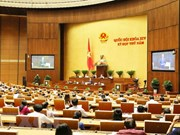 越南第十四届国会第六次会议:暂不审议《特别行政经济单位法》(草案)