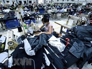 埃塞希望吸引更多越南投资商对埃塞进行投资