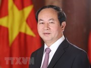 越南国家主席陈大光访问埃及:越南与埃及在各领域的合作潜力巨大