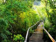 同奈省制定旅游促进计划 集中吸引国际游客