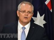 澳大利亚与印度尼西亚自由贸易协定有望早日签署