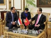 陈大光会见埃及总理穆斯塔法·马德布利