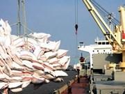埃及将从越南进口100万吨大米