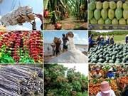 前8月越南农林水产品出口额达257亿美元
