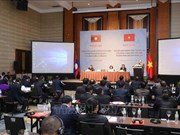 越共中央民运部部长张氏梅:群众工作为建设和平友好的越老边界线作出贡献